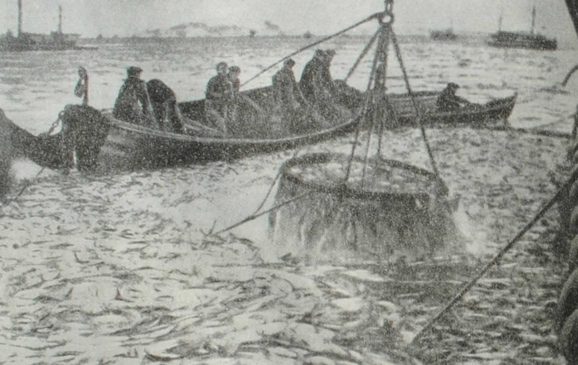 Рыбная ловля у берегов Норвегии. Фотография. 1939 год.